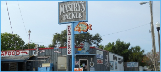 Mastry's Tackle - Saltwater Baits, Fishing Tackles and Seafood Shop